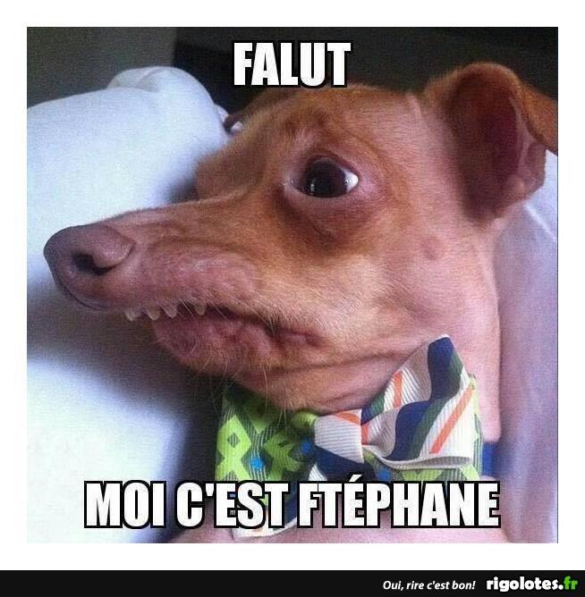 Falut... - RIGOLOTES.f...