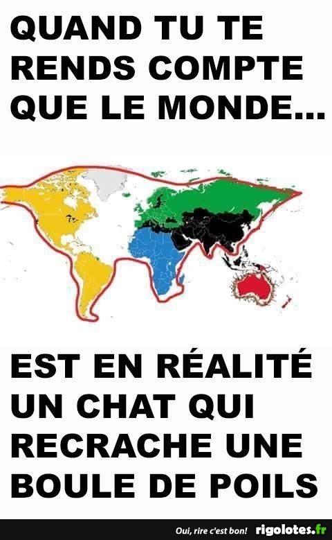 carte du monde chat Carte du monde en forme de chat   Blagues et les meilleures images